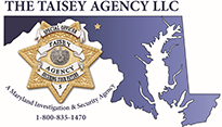 The Taisey Agency